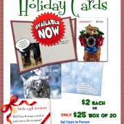 Charitable Christmas Cards Sold Year-Round
