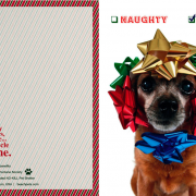 Chihuahua Card - front and back