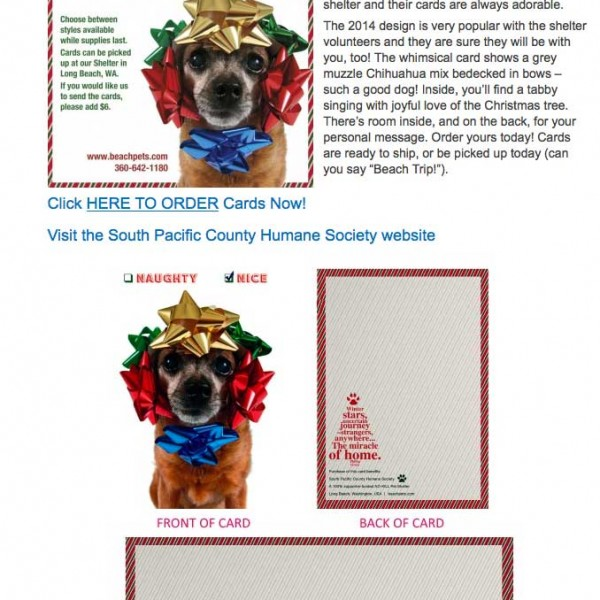 PetFriendlypdx - Chihuahua Card